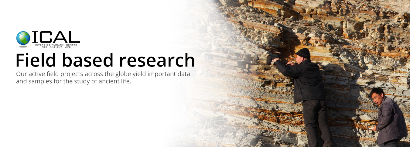 Field-based Research