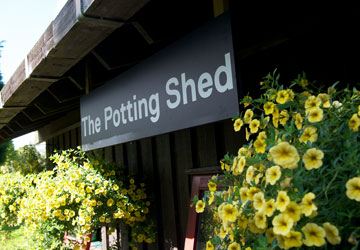 Gardens and grounds: Potting shed.