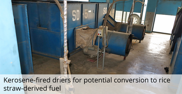Kerosene-fired driers for potential conversion to rice straw-driven fuel
